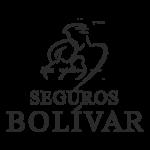 Marcas-_0005_Logo_Bolivar-G